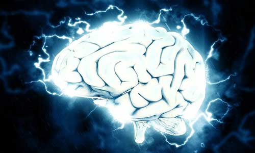 42+ Unknown Amazing Facts About Brain in Hindi